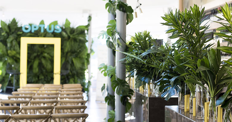 POpology immersive brand activations in sydney